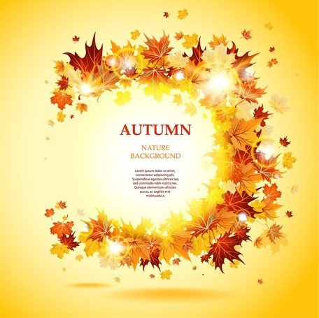 Beautiful Autumn Leaves Card 03