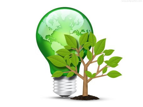 Green light bulb and tree (PSD)