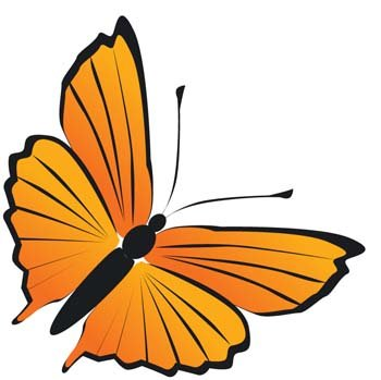 Butterfly Vector 20