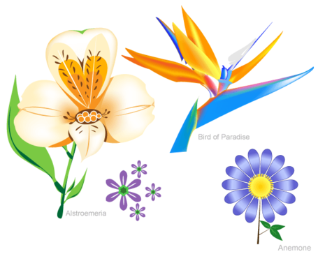 Flowers Free Vector Set