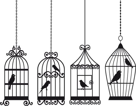 Bird And Birdcage