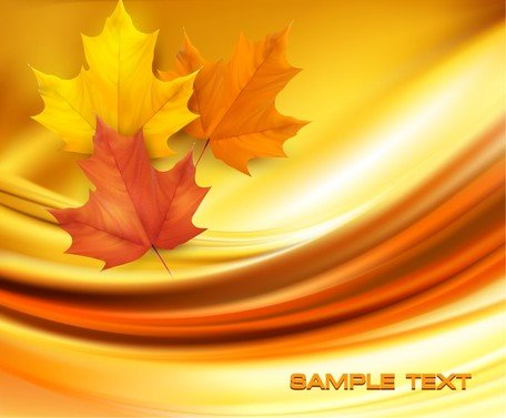 Mooie Maple Leaf