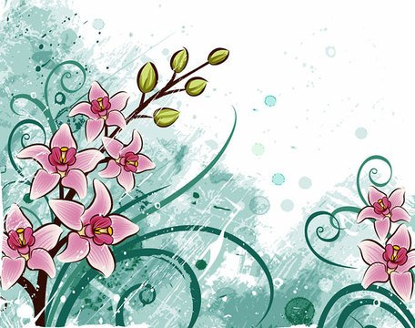 Lily Flower Background (kostenlos)