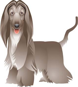 Beautiful Dog Vector 3