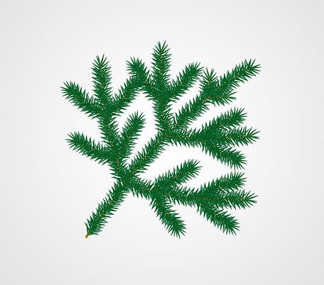 Fir of Christmas Tree Branch
