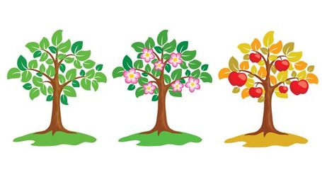 Vector Apple Tree