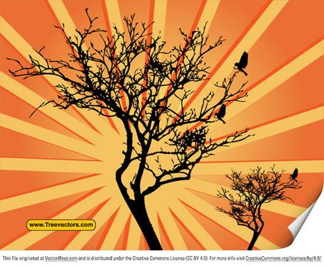 Vector Sunburst Background with Tree
