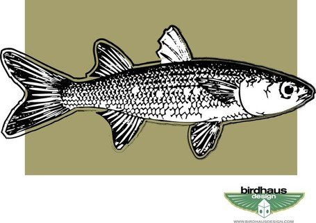 mullet  vector image clipart me Redneck Items Clip Art Free redneck clipart free black and white