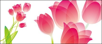 Tulip special material, free vector - Clipart.me