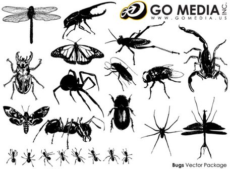 Go Media Vector Chupin material - Insect Series