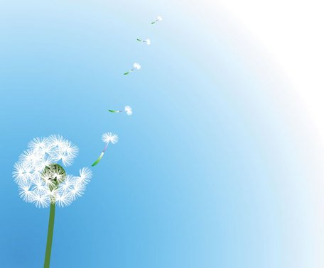 Dandelion Vector with Flying Seeds (Free)