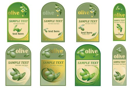 Vector material paste of olive oil bottles