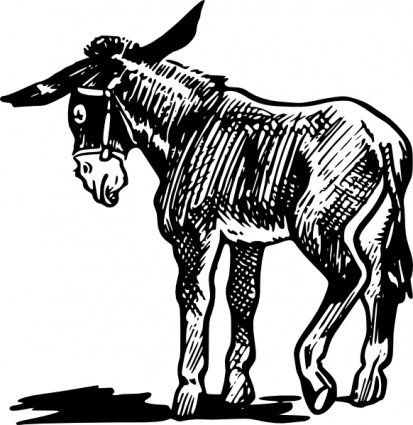 donkey outline in black and white vector file clipartme