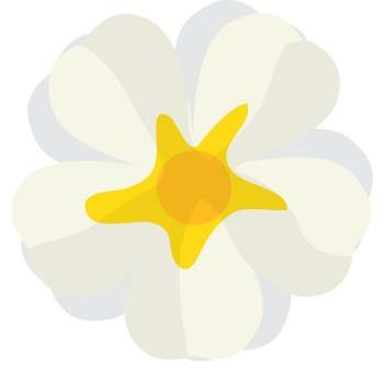 Button Flower Vector 4
