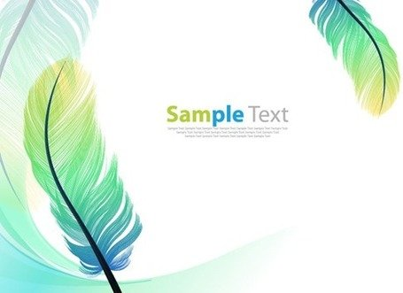 Vector Color Feathers Background
