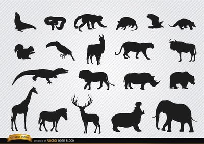 Silhouettes animales sauvages