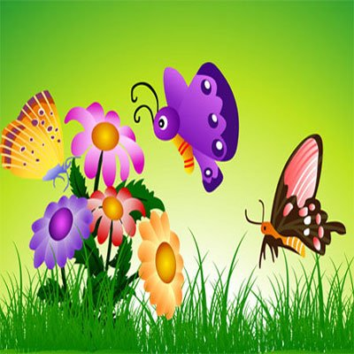 Animals, Nature, Free Butterfly