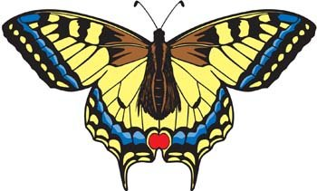 Butterfly Vector 7