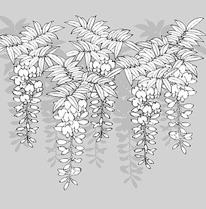 Japanese line drawing of plant flowers vector material -12 (