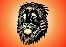 Lion tête Graphics
