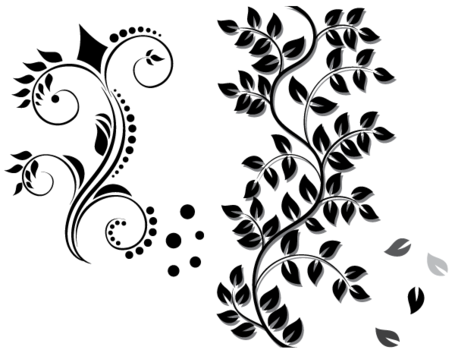 Floral Ornament Vector gratis downloaden