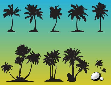 Palm Tree gratis vektor Set