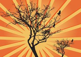 Tree Sunburst Graphics
