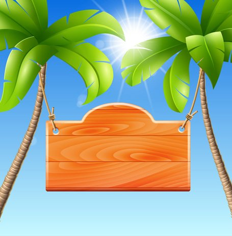 Palm Tree With Sign Background