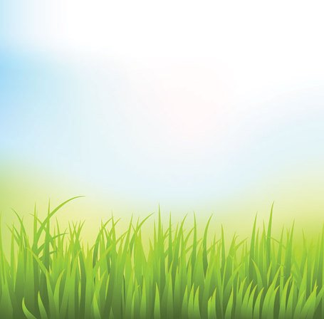 grass background clipart - photo #10