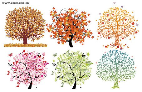 6 beautiful tree