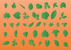 Feuille Vector Silhouettes