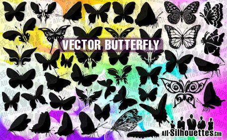 49 Vector butterfly