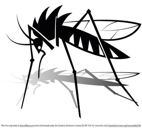 free free mosquito clipart and vector graphics clipart me rh clipart me mosquito clipart black and white mosquito clip art black and white