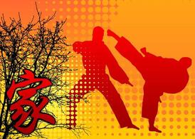 Martial Arts Background