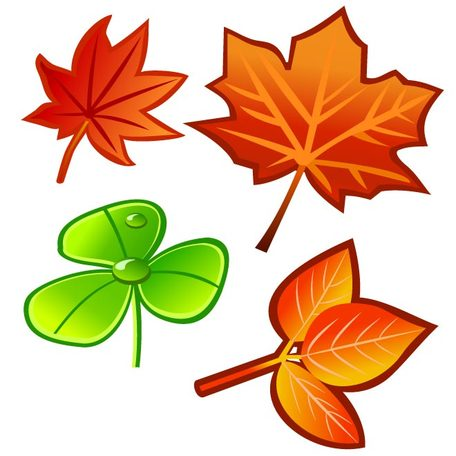 LEAVES VECTORS SET.ai