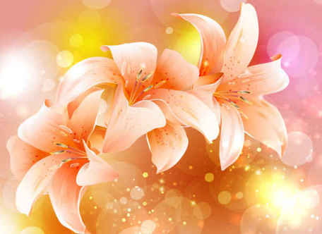 Fancy Colorful Flowers Pink Background