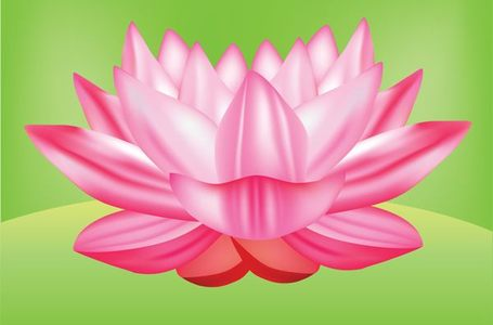 Free Lotus Flower Vector Graphic Free Clipart And Vector Graphics
