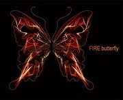 Brilliant Neon Butterfly 05