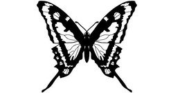 Free vector about free butterfly vector art