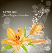 Vector 3 Yellow Lily