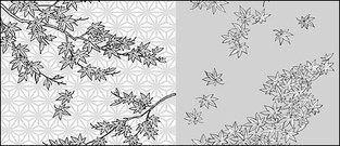 Vector line drawing of flowers-34(Maple Leaf)