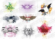 8 the trend of the wings and the pattern