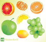 Vector Fruit Free Download