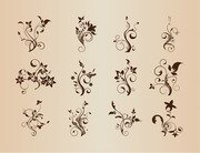 Set of Floral Elements for Design