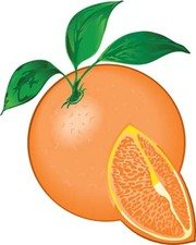 Citrus fruit 5