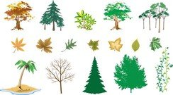 Trees Vector Series