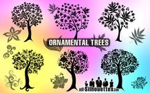 6 Ornamental trees