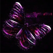 Colorful Butterfly 01