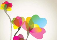Card colorful flower background