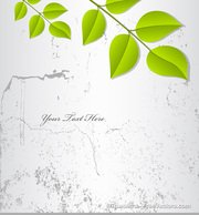 Leaf Grunge Background